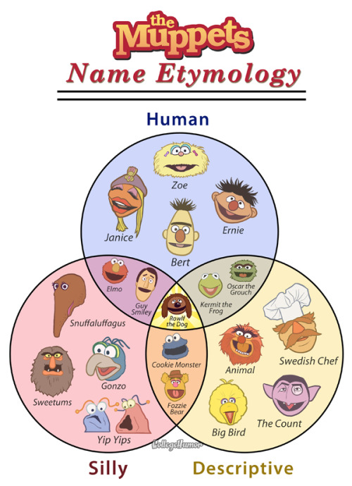 thedailywhat:  Venn Diagram of the Day: Muppet Name Etymology chart by Jeff Rubin and Caldwell Tanner. [jeffrubinjeffrubin / collegehumor.]