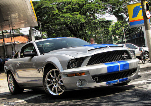carpr0n:  Kobra Starring: Shelby GT500 KR (by RGF Photography)