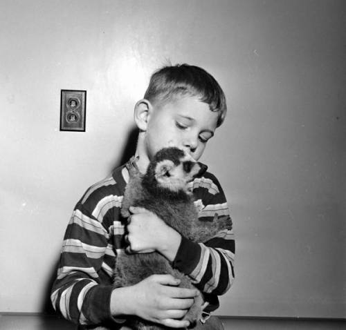 seriouspleasures:  pet lemur/ph.George Skadding/LIFE photo archive