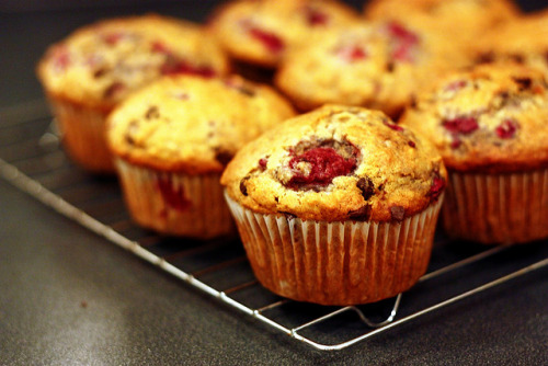 "prettygirlfood:  Raspberry Chocolate Chip Muffins 1 cup unbleached all-purpose flour2/3 cup whole wheat flour 3/4 cup quick-cooking oats1/2 cup sugar2 teaspoons baking powder1 teaspoon baking soda1/4 teaspoon ground cinnamon1 egg, lightly beaten3/4 cup fat-free milk1/3 cup canola oil2 tablespoons orange juice1 teaspoon vanilla extract1 cup fresh or frozen unsweetened raspberries1/2 cup miniature semisweet chocolate chips Directions In a large bowl, combine the first seven ingredients.  Combine the egg, milk, oil, orange juice and vanilla; stir into dry ingredients just until moistened.  Fold in raspberries and chocolate chips.  Fill paper-lined muffin cups or cups coated with nonstick cooking spray two-thirds full.  Bake at 375 degrees F for 20-25 minutes or until a toothpick comes out clean.  Cool for 5 minutes before removing from pan to a wire rack.""  (via prettygirlfood)"