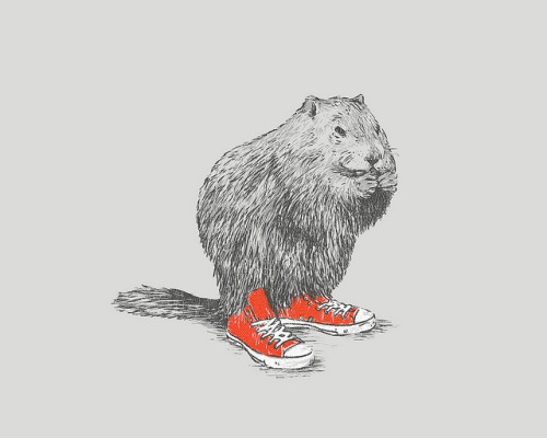 If A Woodchuck Could Wear Chucks.  By David Schwen via notcot