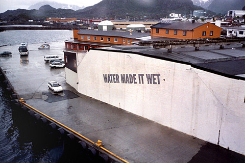 Lawrence Weiner Water Made It Wet, 1998, Norway c/o Charlie Finch - artnet