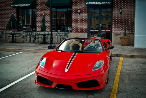 carpr0n:  PhD in Badassery Starring: Ferrari F430 Scuderia 16m (by texan photography)