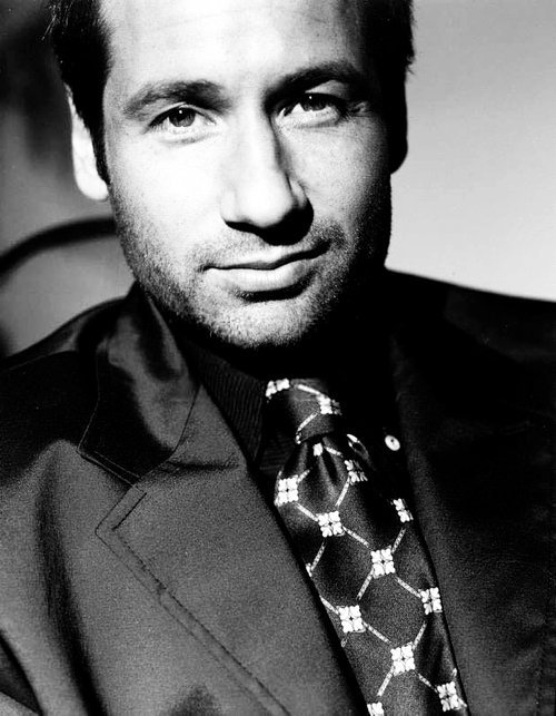 "(via fuckyeahdavidduchovny, developedfromnegatives)  How do you assess David's appeal?""Obviously, the audience is only seeing his character, who's incredibly intelligent, kind, charming, sensitive. He's like the perfect romantic hero. And a lot of that is also David. He brings such a warmth and intelligence to the role and a smooth sexuality that I don't think anybody in their right mind could not find him attractive."" Gillian Anderson, Rolling Stone, 1996"