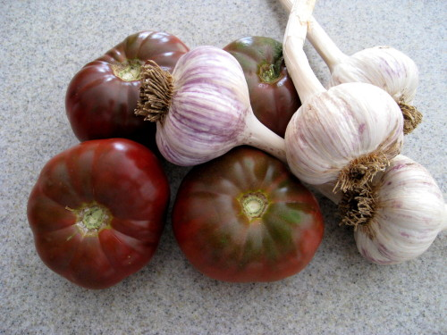 Gourmet Garlic & Cherokee Purple Tomato from my Garden 2010