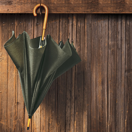 Filson Cover Cloth Umbrella  Source http://www.filson.com/products/cover-cloth-umbrella.69009.html?fromCat=true&fvalsProduct=mens/new-arrivals&fmetaProduct=1015