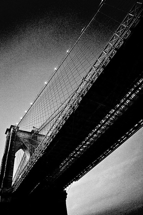 Bajo el puente de Brooklyn. Under Brooklyn bridge.