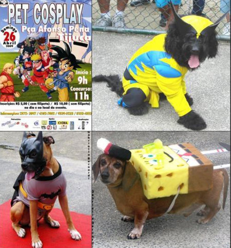 Not even pets are immune to bad cosplay. If these people really loved their pets they wouldn't do this to them.