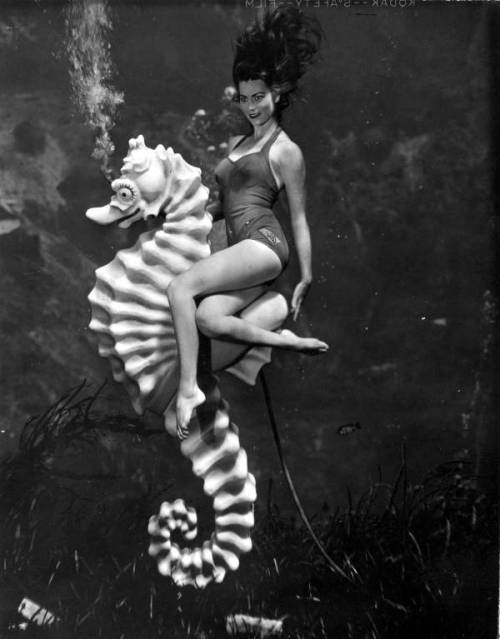 via heracliteanfire:  Mermaid Bonita Colson at Weeki Wachee Springs : Weeki Wachee, Florida (via e-Library OPAC State Library and Archives of Florida)