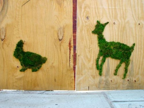 zoquitsa:  Green Graffiti by Edina Tokodi. Click the photo for the article.