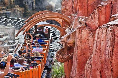 The first time i went on this ride, i didn't even know this dinosaur fossil was here because this ride is so fun and fast!