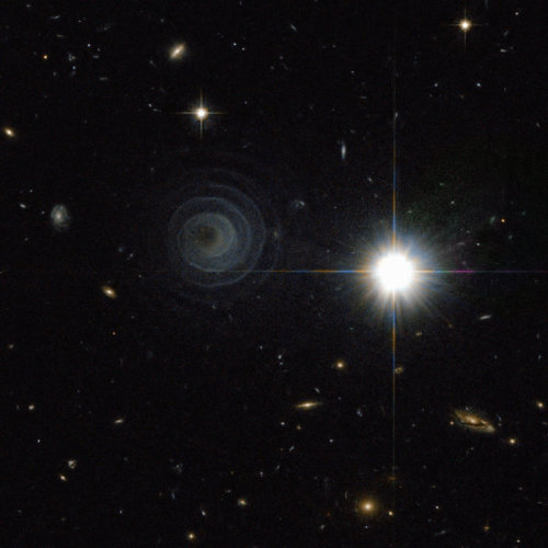 Cosmic Log - Celestial spiral goes viral