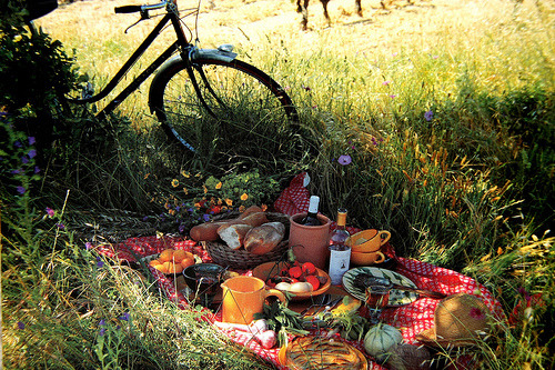 clutteredgypsy: oh how i would love to have a picnic.