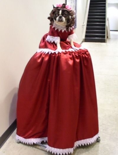 "Yes, there was a dog dressed as Mary Todd Lincoln at Bumbershoot this year. If you're wondering why, you clearly missed the Vis-à-Vis Society's ""Why Vampires? Why Abraham Lincoln? Why Now?"" panel at the Festival.  The discussion was part of the ""Why This? Why That? Why Now?"" series, which focused on different pop culture obsessions each day. In addition to bloodsuckers and Abe, they also tackled topics including cupcakes, bacon, cuteness, and failure.  Thanks to The Stranger for the photo."