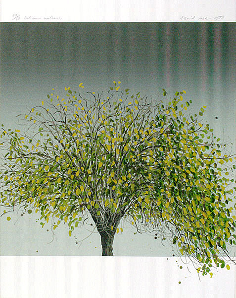 David Rose Autumn Mulberry 1977
