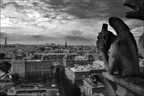 "theworldwelivein:  Gargoyle overlooking the city of Paris, from the ""Galerie des Chimères"" in Notre Dame, Paris, France© miguelyn"