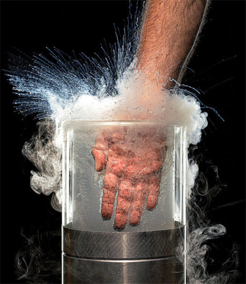 xtc:  Gray Matter: In Which I Fully Submerge My Hand in Liquid Nitrogen | Popular Science