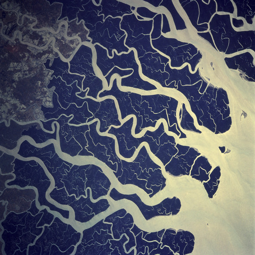 vacantlots:  This is a satellite photo of the Ganges. It is a good example of pattern replication in nature. The twisting lines of the rivers are in fact approximate fractals.