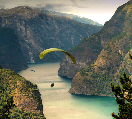 paragliding in the aurlandfjords, norway this looks absolutely amazing.
