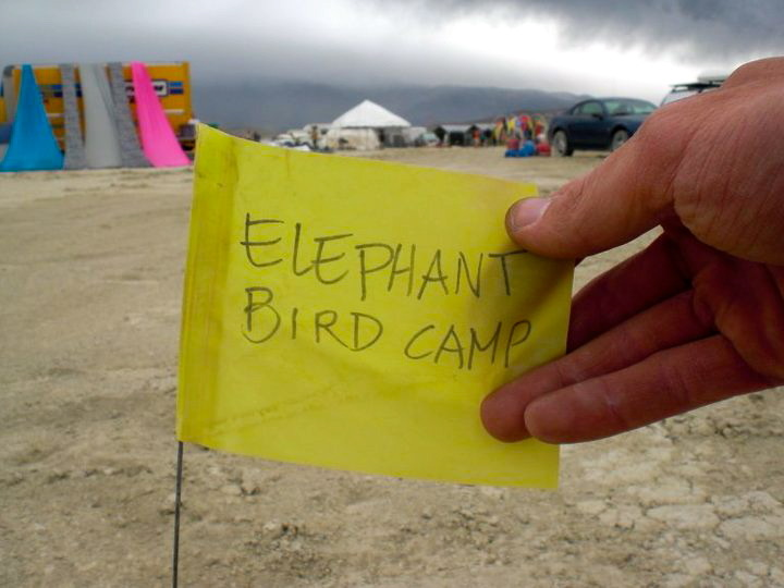thefunkyones:  Elephant Bird Camp!  Elephant Bird Camp 2010
