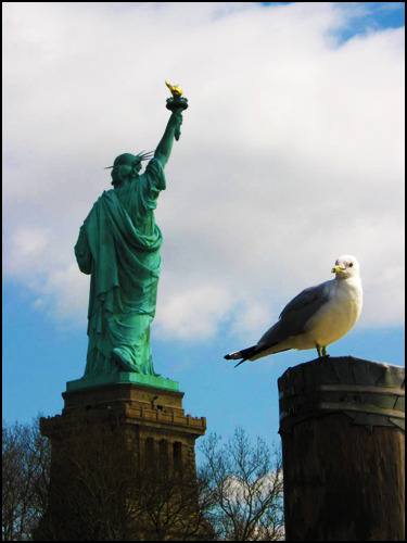 Statue of Liberty, 2008. [Photo by me.]