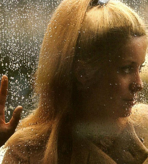 "Catherine Deneuve in The Umbrellas of Cherbourg (1964, dir Jacques Demy) ""[The Umbrellas of Cherbourg] was a film that existed before it was even  shot. I remember that when we heard the music, we were all incredibly  moved, even though there were no images yet. Jacques Demy was very demanding  but also very shy, and he liked to laugh. I recognized myself completely  in his way of working. The making of the film was pretty nonsensical  and I found that very attractive: everything seemed extraordinary. And I  think that I felt that he regarded me as indispensable.  I realized that  cinema had the potential to be like that: meetings between people who  want to do very unusual things. If the film hadn't done well, I think it  would have been a different story—it confirmed that the most important  thing was to do the things you want to do with people you trust and  whose ideas don't seem too conventional to you. For me, something truly  shifted when I worked with Jacques. Something profound happened around  the relationship you can have with a film."" -Deneuve, Film Comment (Nov./Dec. 2008)"