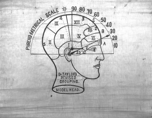 Phrenological chart by Dr. John William Taylor. Found here.