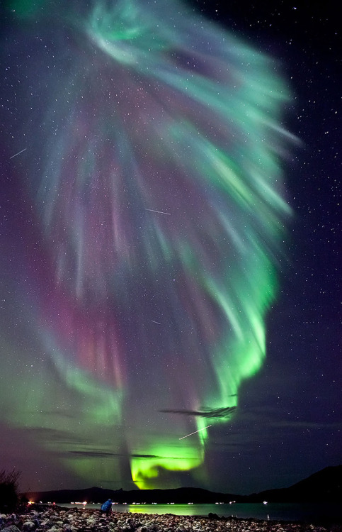 itsfullofstars:  Aurora Over NorwayCredit & Copyright: Ole Christian Salomonsen Explanation: Auroras can make spectacular sights. Photographed above last weekend, flowing multi-colored auroras helped illuminate a busy sky above Tromsø, Norway. Besides the spectacular aurora pictured above, the photographer caught three satellites streaks, one airplane streak, and a friend trying to capture the same sight. Although auroras might first appear to be moonlit clouds, they only add light to the sky and do not block background stars from view. Called northern lights in the northern hemisphere, auroras are caused by collisions between charged particles from the magnetosphere and air molecules high in the Earth's atmosphere. If viewed from space, auroras can be seen to glow in X-ray and ultraviolet light as well. Predictable auroras might occur a few days after a powerful magnetic event has been seen on the Sun.  One day I will see this with my own eyes