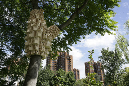 London Fieldworks, Spontaneous City in the Tree of Heaven (2010), Duncan Terrace Gardens and the other in Cremorne Gardens, London. (via Kitsune Noir)