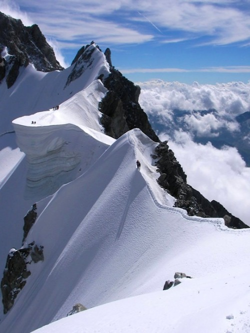"ysvoice:  velimir:  lonelycoast:  Rochefort Ridge, Mt. Blanc, Alps   Ma la gente sono pazzi.  Wow! once again the ""reblog avalanche"" of this photo seems started."