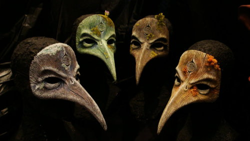 4 seasons of bird beaks by ~GorillaEye
