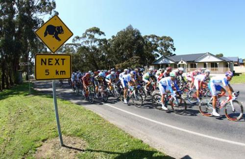 Drop Bears, next 5KM.