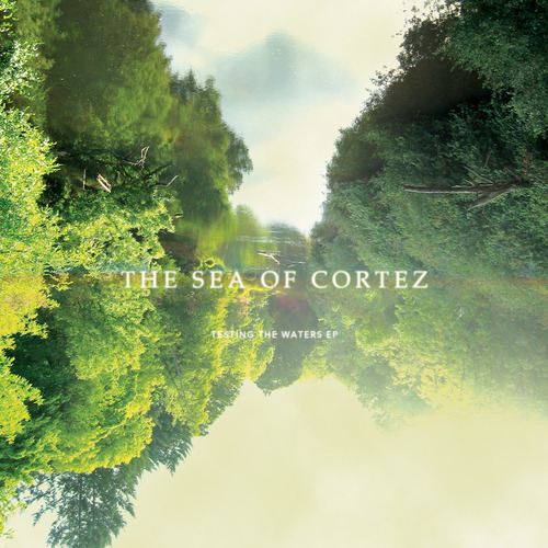 "The Sea Of Cortez ""Testing The Waters"""