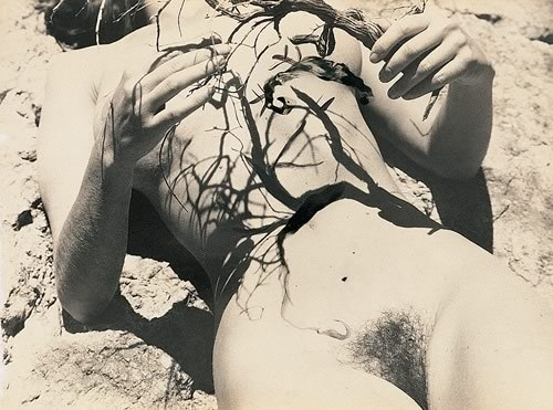 Salvador Dali- Pagan lepidopterus [in possible collaboration with Buñuel],1935