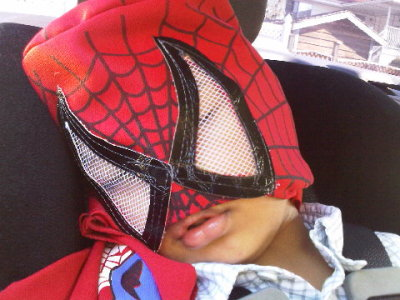 Spidey is out… Zzzzzz…