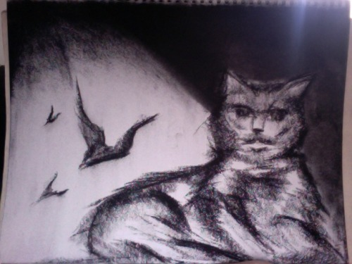 I like bats and black cats. But i hate this drawing…oh well im behind.