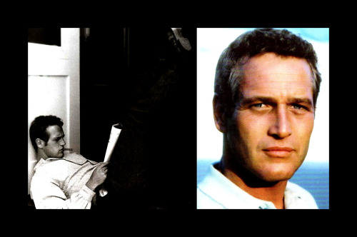 dotdotcarly:  Top 10 Classic Beautiful Men — # 1 Paul Newman