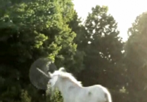 Absolutely not fake: A real unicorn caught on film in Canada There's absolutely no way that this is just a cheap way to get people to visit the Ontario Science Centre and its website. And there's absolutely no way that this is a fake horse gliding along on wheels into the forest. THAT'S JUST HOW UNICORNS RUN YOU IDIOT. Jesus, read a book sometime. Unicorns glide along the ground like a fart on linoleum.  Check out the video here at the Ontario Science Centre