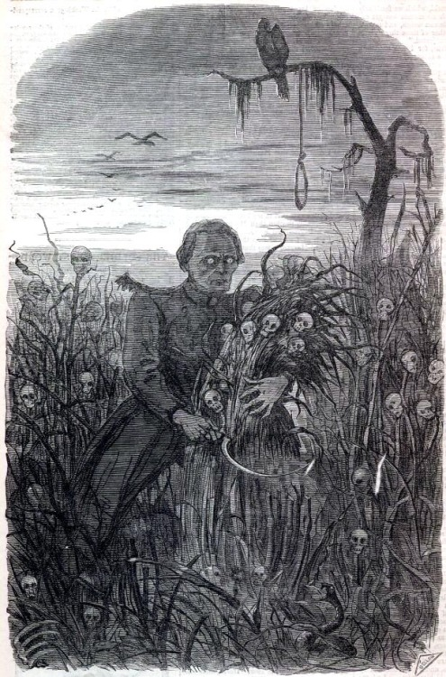 From Harpers Weekly (Oct. 26, 1861) Jeff Davis Reaping the Harvest.