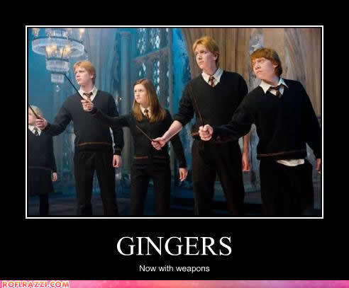 Careful harry, they have wands…