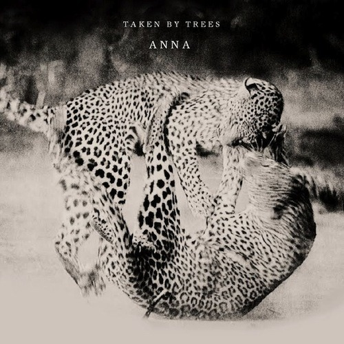 Taken By Trees - Anna (CFCF Remix)