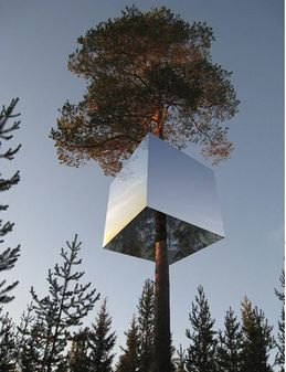 Treehotel, Sweeden: Take a holiday up in a tree