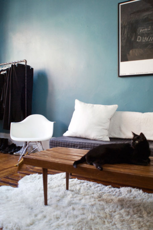 Apartment Therapy: Mike's Surprising Student Studio