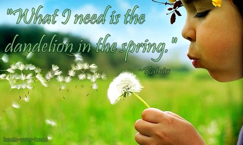 "heels-over-head:  ""What I need is the dandelion in the spring."" -Katniss"