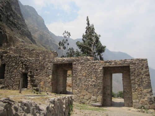 "On our second full day in the Sacred Valley of the Incas, we decided to take a tour arranged with our hotel with a really nice young tour guide named Ernesto.  He took us the only way we could possibly go to the ancient town of Ollataytambo: on bikes.  Since there was a strike, all the roads were closed to anything with a motor, so bikes were the only way to get by and travel a significant distance.  Pretty sure it was the longest bikeride I have ever been on and my bum had never been so sore when we were done.  We traveled on the highway for part of the ride and over dirt/gravel roads for the other part.  We got to see a lot of the town of Urubamba and the countryside in between Urubamba and Ollataytambo.  There were bulls just hanging out by the train tracks we rode along and hardly any people.  When we arrived at the town of Ollataytambo, we got to tour the ancient Inca ruins that are from the time of Machu Picchu and although not quite as awesome as Machu Picchu, I was glad that I got to see them!  Our tour guide knew a lot of the history and told us what all of the ruins used to be, and about the people who lived there.  Ollataytambo was in a way, a sort of fortress to protect the entrance to Machu Picchu and the actual town that is still inhabited is built up from the original foundations that the Incas had built way back in the day.  After our tour of the ruins, we went to the main plaza and had a delicious freshly squeezed fruit juice.  When we left, it was starting to rain, but somehow, we rode fast enough on our bikes to outrun the storm.  On the way back to Urubamba, we passed lots of adorable children who didn't have school due to the strike and were out playing in the street (there weren't any cars driving on it to cause any danger) who would all greet us with a friendly ""hola"" and huge smiles, which was one of the highlights of the trip for me.  Before we got back to Urubamba, Ernesto took us to his tiny home town and brought us to a place where they make the alcoholic drink ""chicha"" and raise guinea pigs.  Ernesto explained to us how chicha is made with corn, a very important peruvian staple crop and he also explained the gory details of how a ""cuy"" or guinea pig is prepared to cook and eat.  Quite interesting, not a food that I really wanted to try, but I respect that we all have our different delicacies foods, right?  When we returned from our bike ride, we had just a few hours before we had to be on the road to try and catch our bus.  Luckily, the roads were open so we went back to Cuzco that night.  The only problem was that our bus wouldn't leave because there was one town on the way back to Arequipa that was full of crazy people on strike who absolutely wouldn't let any vehicles pass so Tom and I decided to stay in Cuzco at a cheep hostal that night and catch an early and very expensive flight back to Santiago in the morning.  And that is what we did."