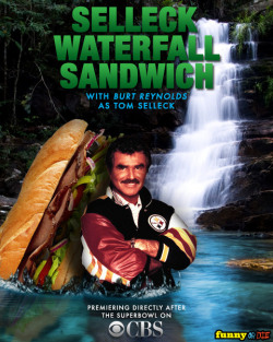 selleckwaterfallsandwich:  Featured Sandwich: The Bur(n)t End