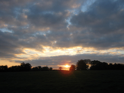 autumn sunset on a dog walk