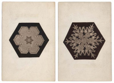 wilson bentley, snowflakes, 1902c
