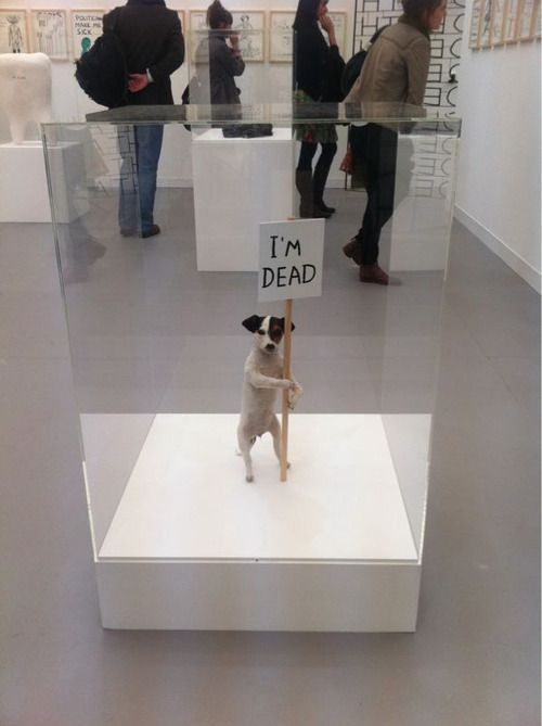 David Shrigley, Dog, 2007 (via art-documents)