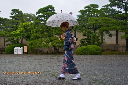 Kyõto rain. A young lady in kimono at Nijõ Castle Kyõto.